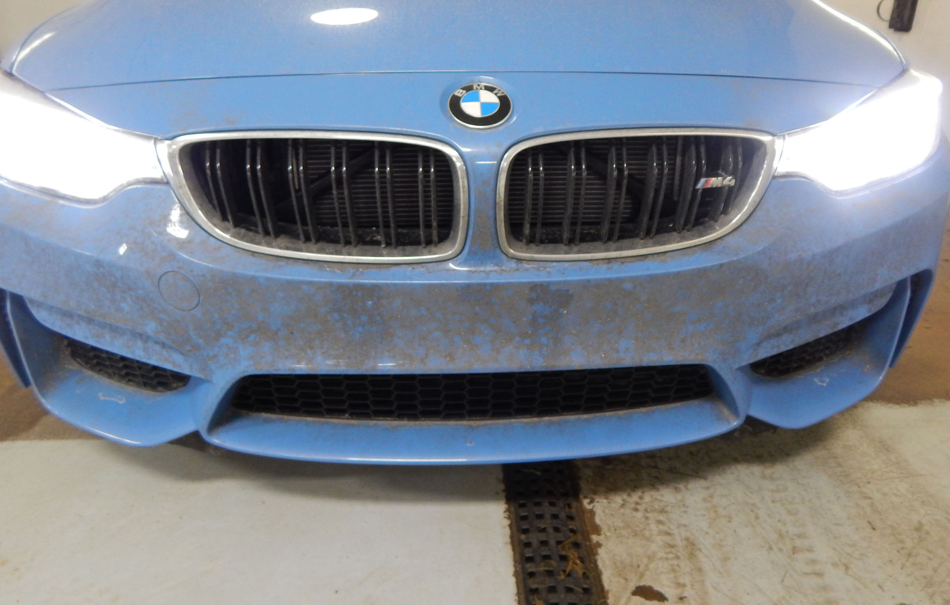Paint Protection Film (Clear Bra)